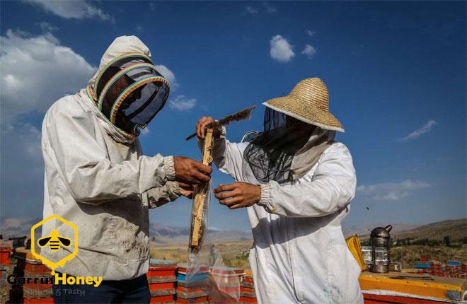 عسل گروس